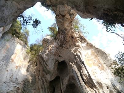 Grotta dell edera
